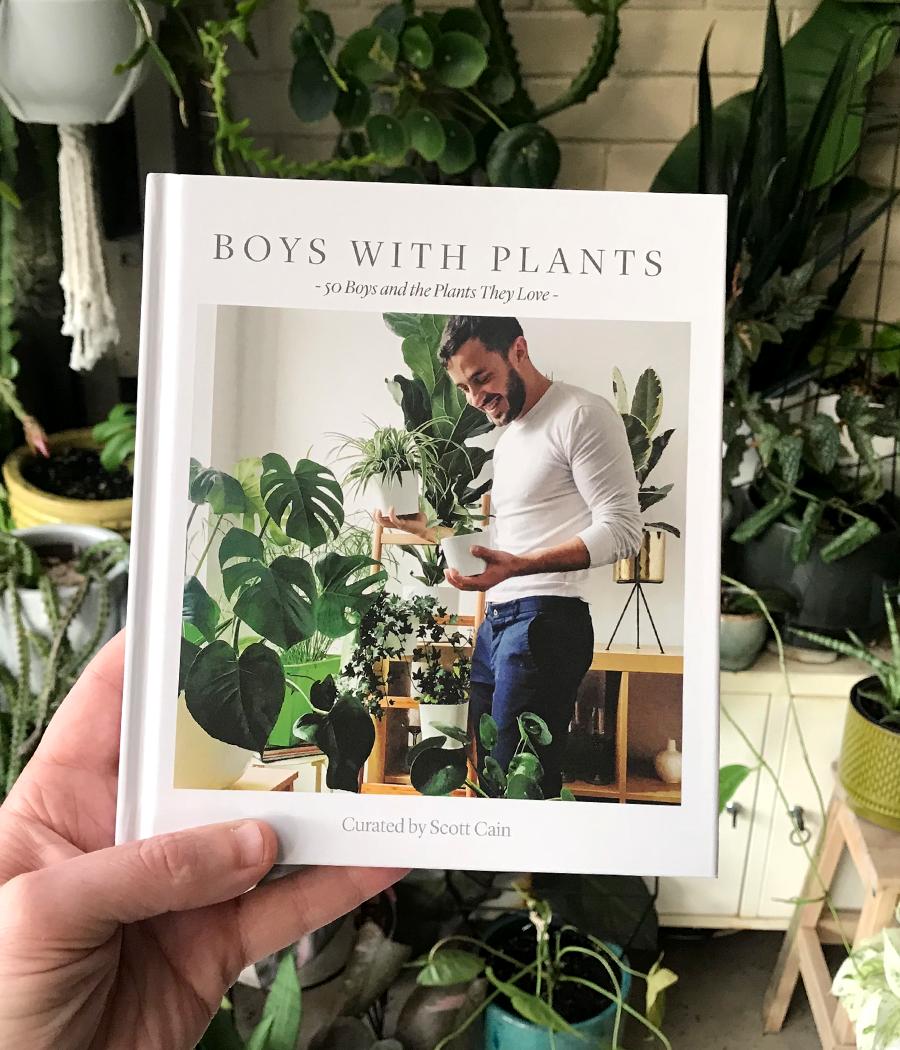 Boys with plants, livres, plantes, âme bordeaux, art