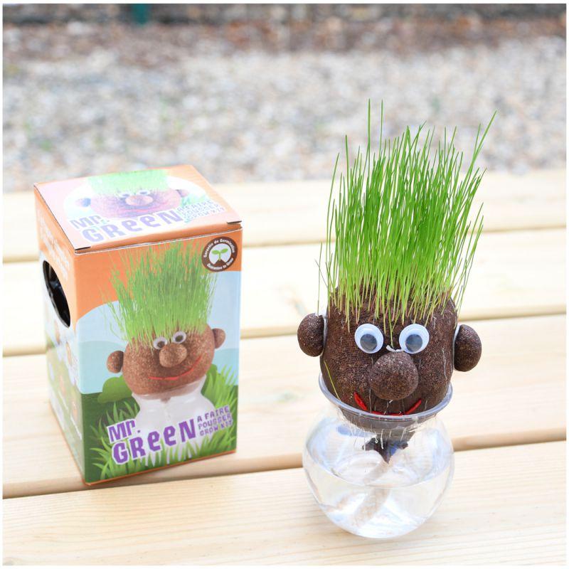 Âme, Âme Bordeaux, Mr Green, Radis & Capucine, tête à pousser, tête à planter, Mr Patate végétal